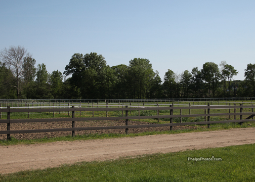 Image Gallery A Visit To Concord Ridge Equestrian Center