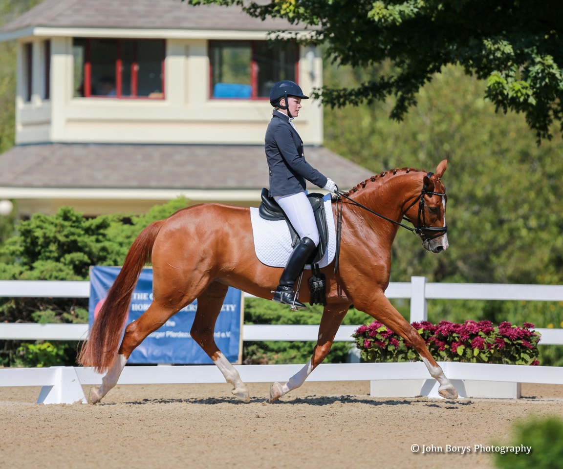 For Emily Miles It S All In The Family Horses Dressage
