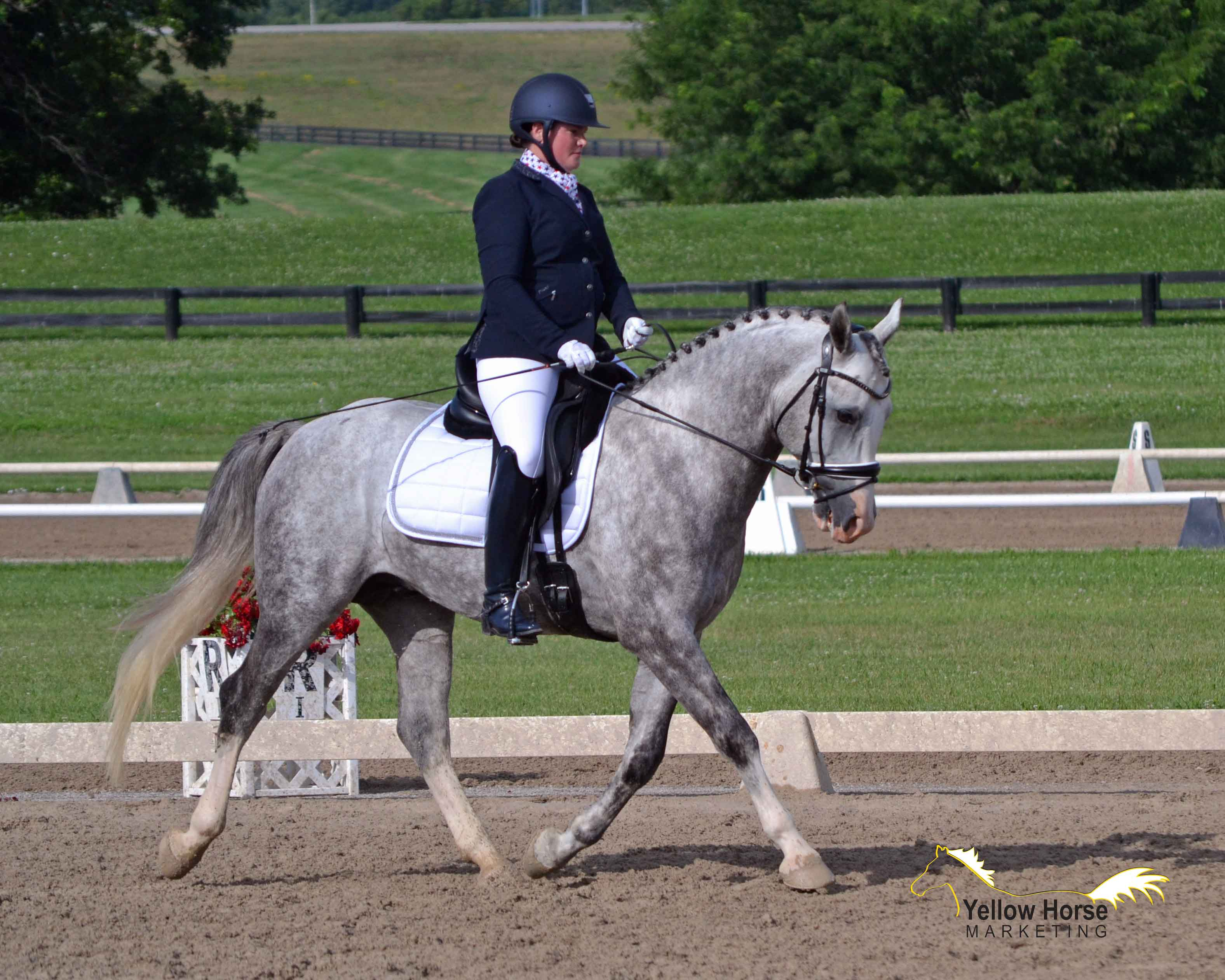Kathryn Barry And Magnum Turn Heads At The National