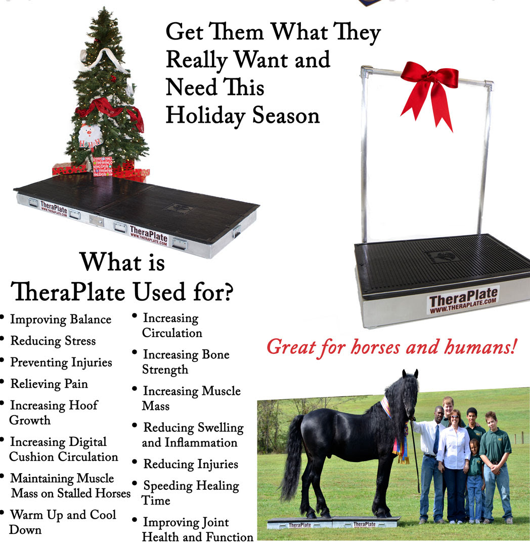 Deal Of The Day Get Them A Theraplate This Holiday Season