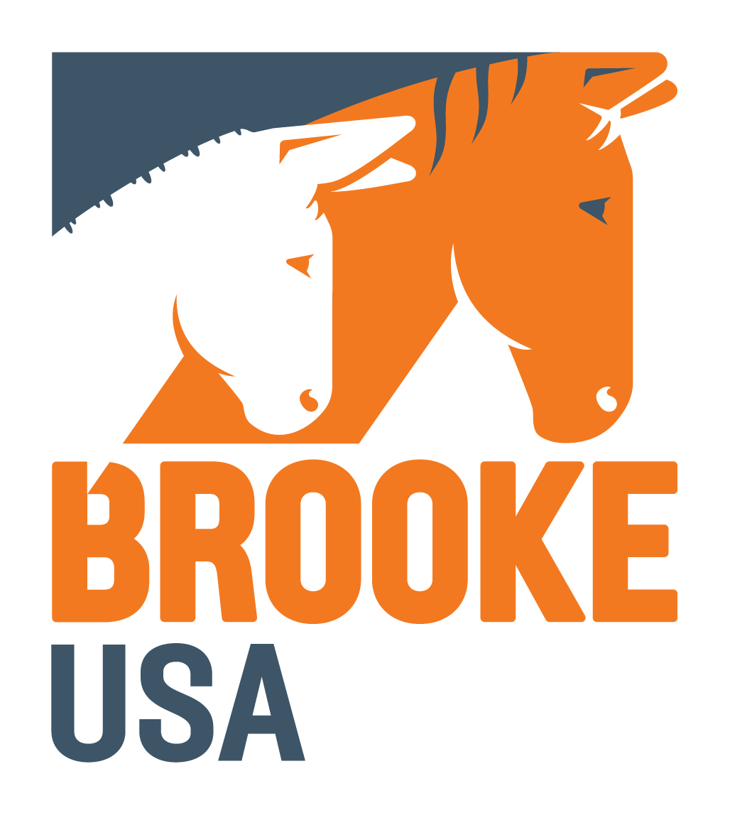 Brook USA