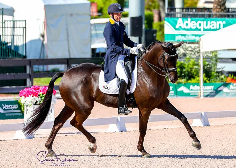 Endel Ots and Lucky Strike in their winning ride. ©SusanStickle.com