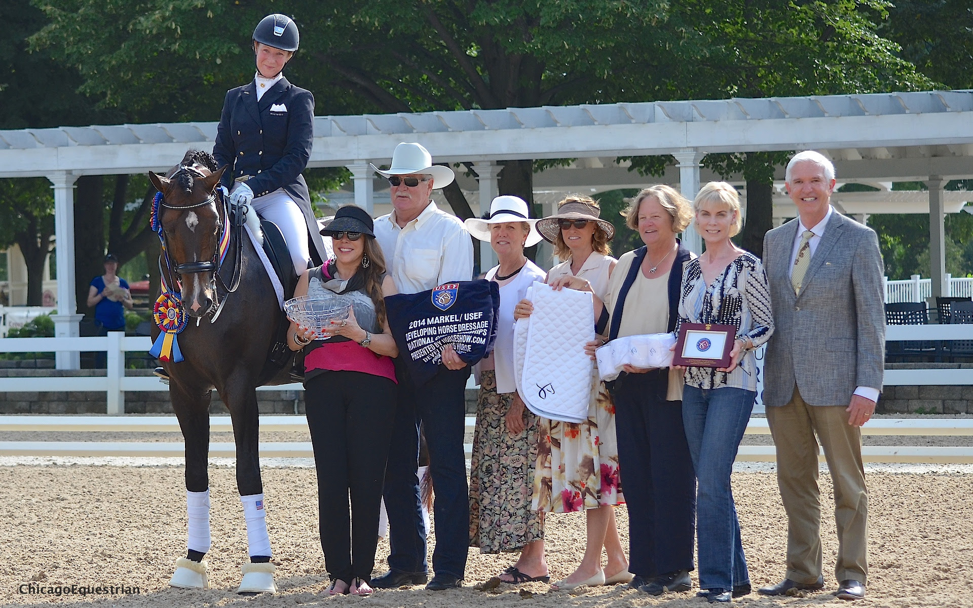 Markel Usef Young And Developing Horse Dressage