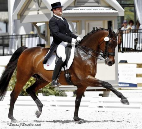 2010 US Dressage Team members for the World Equestrian Games, Todd Flettrich and Margaret Duprey's Otto performed consistently throughout the Winter Equestrian Festival is Wellington Florida performed strongly at the 2012 Olympic Selection Trials.