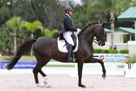 David Marcus and Don Kontes at the 2013 Palm Beach Dressage Derby CDI-W (Photo: Susan J Stickle)