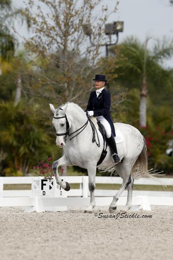 Janne Rumbough and Junior in their first CDI Grand Prix (Photo: Susan J Stickle)