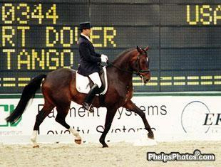 Robert Dover and New Tango finished 12 at the WBYHC 5 year old division in Arnhem in 2000, and went onto finish 8th in the 6 year old division.