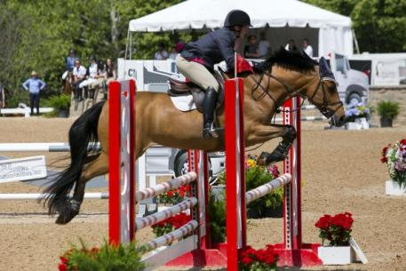 Margaret Mac Harg and Winston won the ,5000 Low Child/Adult Jumper Classic