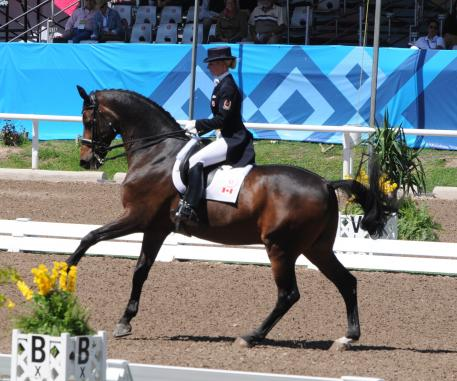 Tina and Winston in the Prix St Georges (Photo: Dieter Busse)