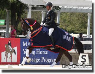 2011 Markel/USEF National Uong Dressage 5 Year Old Champion Hampton Meadows, LLC's Donna Tella (Don Picardi - Gesa by Glorieux) ridden by Werner Van Den Brande