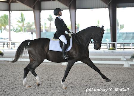 Elizabeth Traband and Ucari at the 2014 Adequan Global Dressage Festival CPEDI3*. Photo by Lindsay McCall