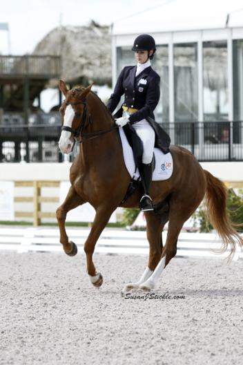The Prix St. Georges class was won by Caroline Roffman and Pie, who, with a score of 68.789%, narrowly beat Shawna Harding on Riggo with 68.526%. (photo: SusanJStickle.com)