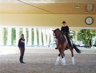 Elizabeth Niemi working with Steffen Peters