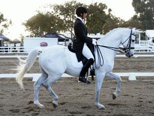 David Blake and Catapult at the Dressage Affaire2011 in Del Mar, California.