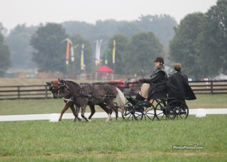 Dusty, Buddy, Mary Phelps and Kelly Gage during the dressage test at the Hermitage Classic.(photo: JJ Hathaway)