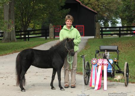 Donna Crossman and her miniature horse Bella.