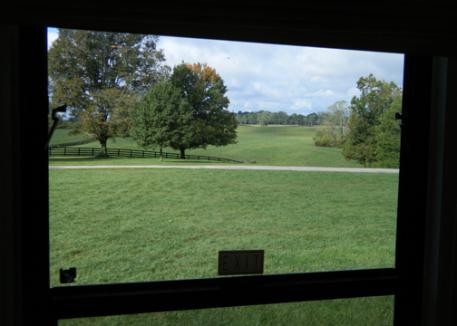 The view from our camper window of the Hermitage Farm