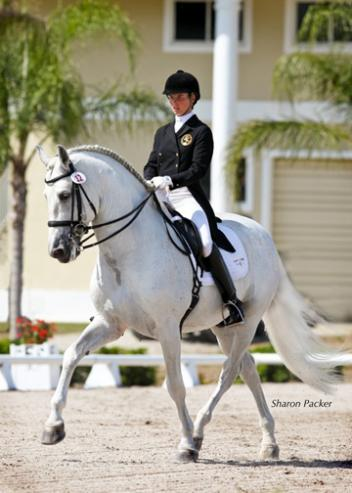 Currently Idilio is ridden and competed by long-time Lendon Gray student and former international Young Rider Mica Mabragana (photo: Sharon Packer)