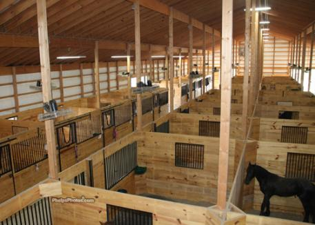 View from the upstairs lounge overlooking the 40 stall barn.