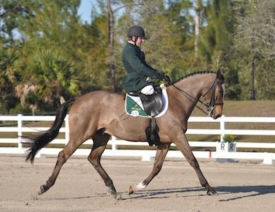 James Dwyer (Grade IV Ireland) and Orlando (Photo: © Lindsay Y McCall for the United States Para-Equestrian Association)