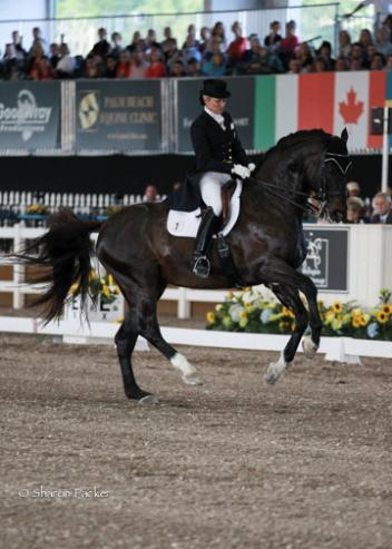 Tina Konyot and Calecto V during the Grand Prix at The World Dressage Masters Palm Beach 2013. Photo sharonpacker.com