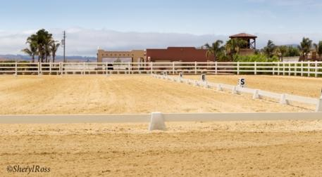 Quality footing at the Gilroy Gaits Equestrian, great views, weather and stabling added to the upgrades of the SFP Chapter Dressage show  Photo: Sheryl L Ross