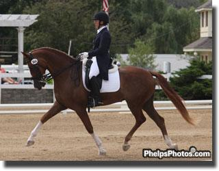 Warsteiner (Riverman-ISF - Welona by Roemer) owned and ridden by Heather Mason
