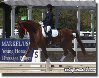 Alyssa Pitts who travelled across the country from Washington State was close behind with Melissa Mulchahey's Westphalen gelding by Furst Piccolo, Furst Fiorano