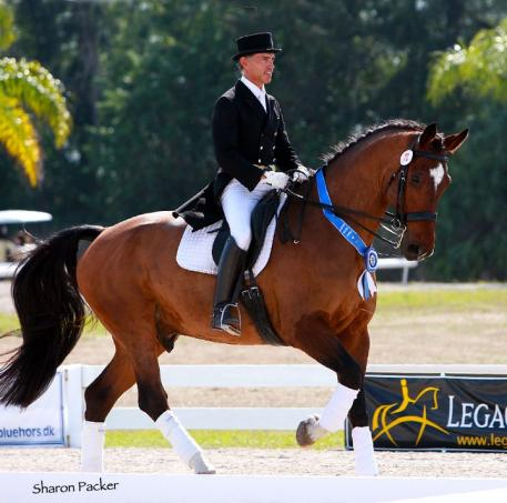 Jim Koford and Rhett will participate in the CDI5* (Photo: Sharon Packer)