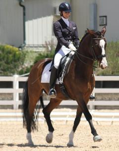 Shannon Dahmer and Rock On extend during the FEI Freestyle Test of Choice at the Colorado Horse Park's High Prairie Dressage II