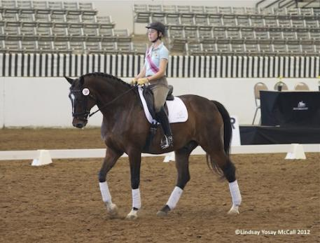 New dreams begin for Courtney King-Dye who will make her para-equesrian debut at the Houston CPEDI3* on Nicolai