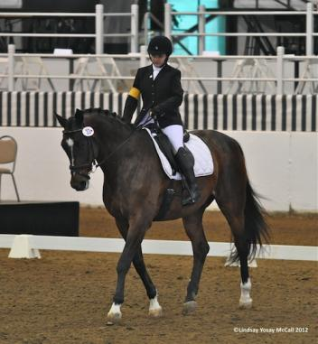 Sydney Collier (USA) Grade II and Nicolai, owned by Andrea Hart