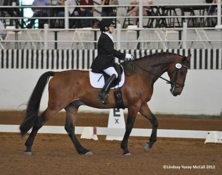 Donna Ponessa (USA) Grade Ia and and Silvano, owned by Dr. Michele Miles