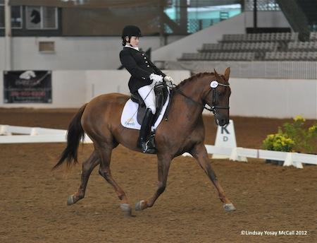 Lauren Barwick [CAN] and Off To Paris Champion High Point Rider at HDS CPEDI3*