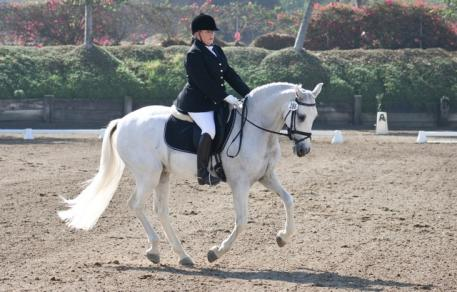 Christine Martin of Lake Forest CA and Letrado 15, 11 year old PRE gelding bred in Costa Rica