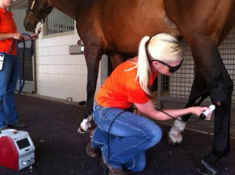 The Sanctuary Equine Sports Therapy & Rehabilitation Center is partnering with The American Institute of Medical Laser Applications to offer a seminar about understanding high tech therapies available to optimize the performance of your equine athlete. (Photo courtesy of The Sanctuary)