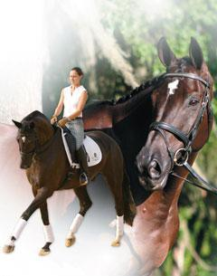 One of Stacy's most successful upper level mounts is the black Trakehner gelding High and Mighty, owned by Aileen Daly. Credit: BLUECENTAUR.COM