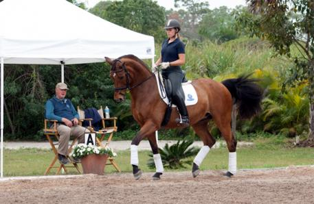 Nancy Later Lavoie's student Ariel Matisse riding in a clinic with Conrad Schumancher