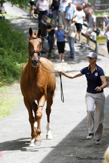 Heather Blitz and Paragon one of 15 to compete in the Grand Prix (Photo: Susan J. Stickle)