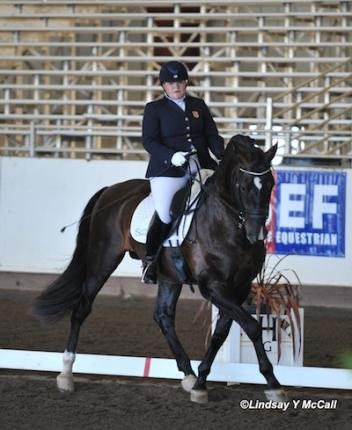 Susan Treabess and Kamiakin at the 2013 Golden State Dressage Festival CPEDI3*. Photo by Lindsay McCall.