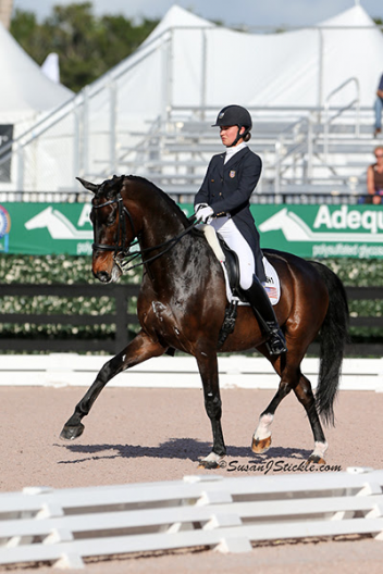 Adrienne Lyle and Wizard at the 2014 Nations Cup Photo: SusanJStickle