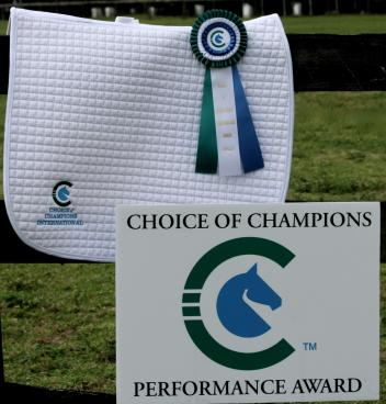 The Choice of Champions Performance award with recognize outstanding horse and rider combinations during the 2014 Adequan Global Dressage Festival.