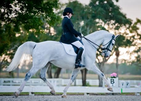 Anne Cizadlo, who had the highest score of the show, riding Paula Runnell's horse Paddington, a KWPN (Droomwals x Herma/Batello) scored a 75.132% in Third Level Test 1. Photo: Joanna Jodko