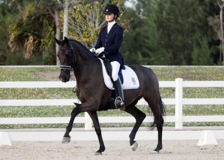 Cutler Farm's Mary Bahniuk Lauritsen who rode Ansgar, a 2005 Dutch Warmblood by Special D, owned by Nicole Polaski to a Third Level Test 1 win with a 71.3% score at the 2012 Wellington Classic Dressage Challenge 1 (Photo: Wellington Photo)