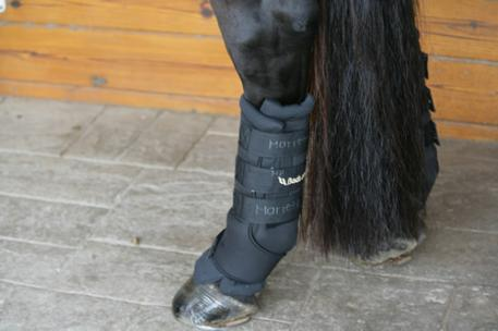 Back on Track Easy On/Off Leg Wraps Reflect Horse's Body Warmth, Reduce Swelling without Liniment or Poultice
