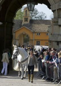 The top 10 after cross-country in the Mitsubishi Motors Badminton Horse Trials have all passed this morning's trot-up.