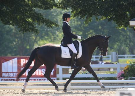 High Valley Hanoverians' won the 2013 Markel/USEF National 4 Year Old Dressage Championship Photo: Mary Phelps