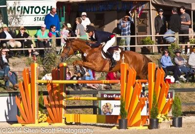 Bert Mutch gets the hat trick at Woodside, winning the Welcome Stake, Woodside Classic Grand Prix, and USHJA National Hunter Derby. Photo: Sheri Scott