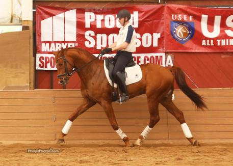 Breeder Ken Borden of Lil Bit Farm and his 4-year-old stallion by Opus, Ovation