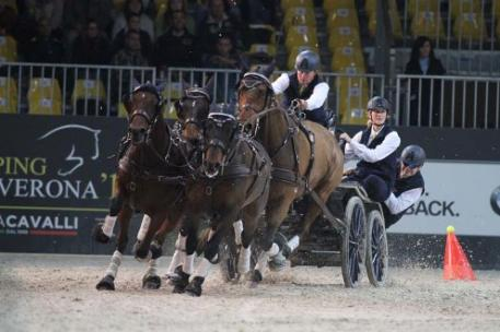 Boyd Exell on his way to win the first edition of the FEI World Cup™ Driving in Verona (Photo: Rinaldo de Craen/FEI)